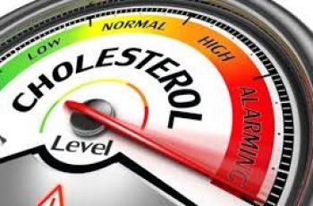 Cholesterol study