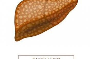 liver Fatty research study