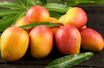 Benefits-mangoes