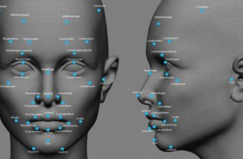 Face Recognition Study